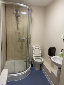 Toilet, sink and shower